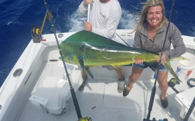 Great Mahi fishing this year